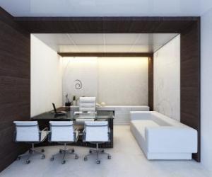 Executive chamber option 2 (8)